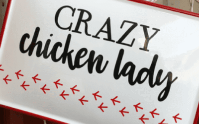 Crazy Chicken Lady Starter Kit Buying Guide