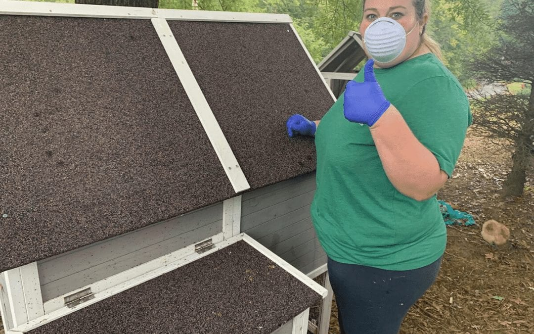 Safe Practices for Cleaning Coops