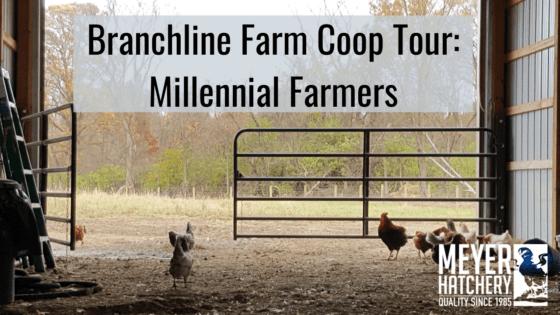 Branchline Farms Coop Tour