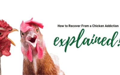 12 Steps For The Chicken Addict