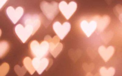 35 Reasons To Love Meyer Hatchery