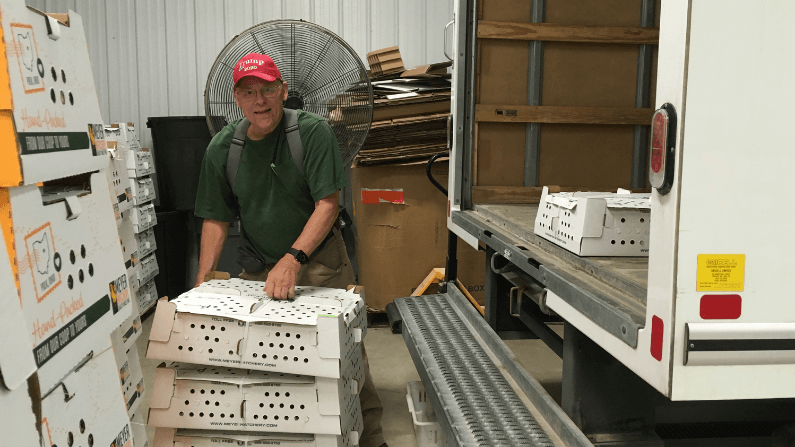 How Does Meyer Hatchery Ship Chicks Year-Round?
