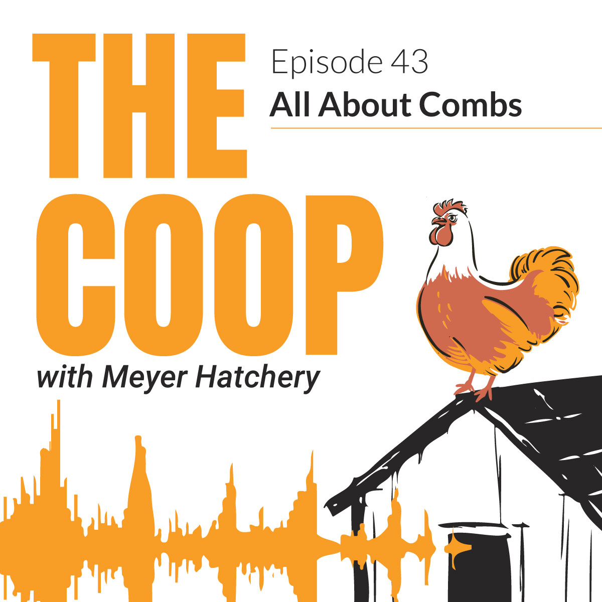 All About Combs | The Coop Podcast