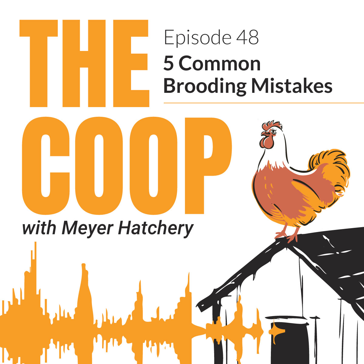 5 Common Brooding Mistakes | The Coop Podcast with Meyer Hatchery