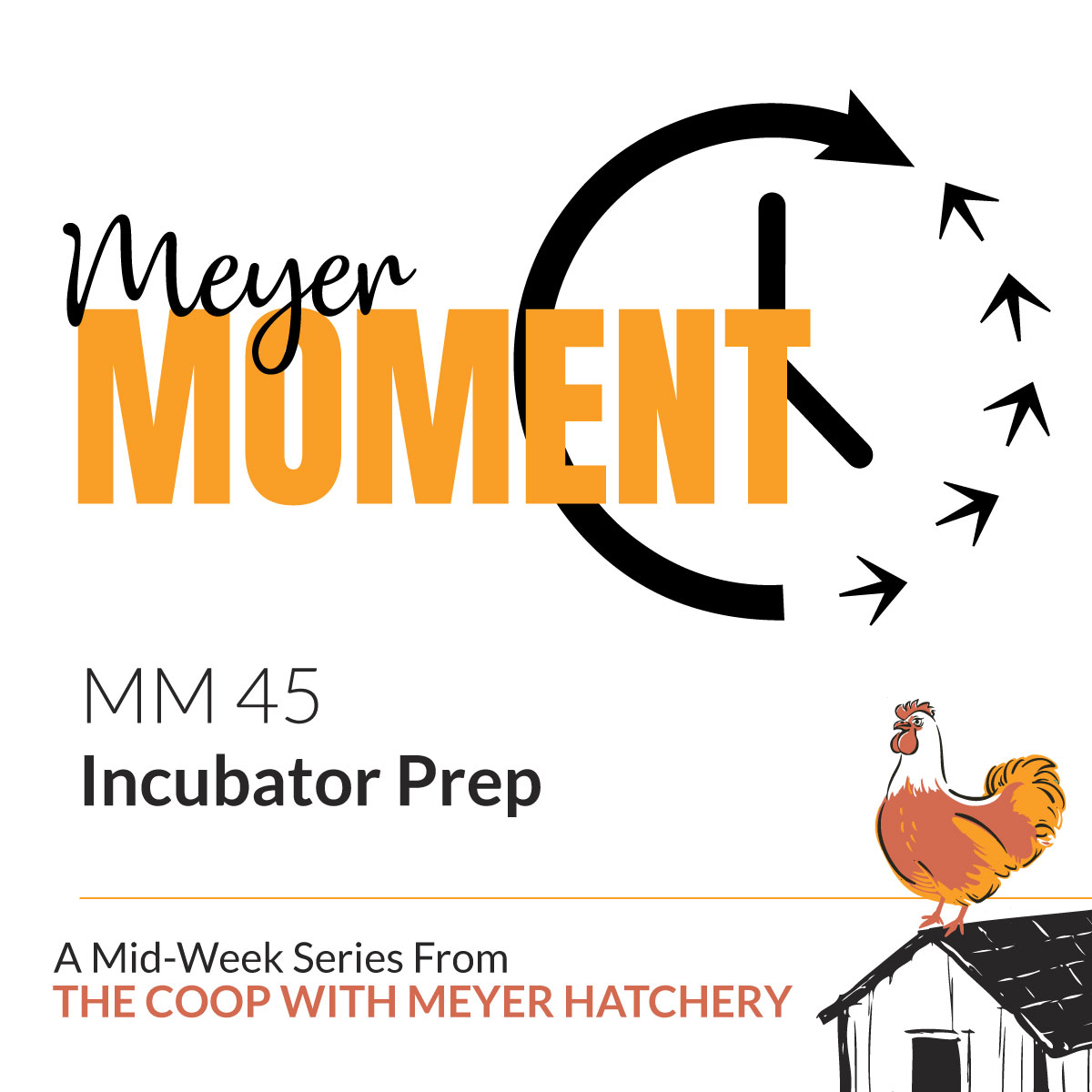 Incubator Prep - The Coop with Meyer Hatchery