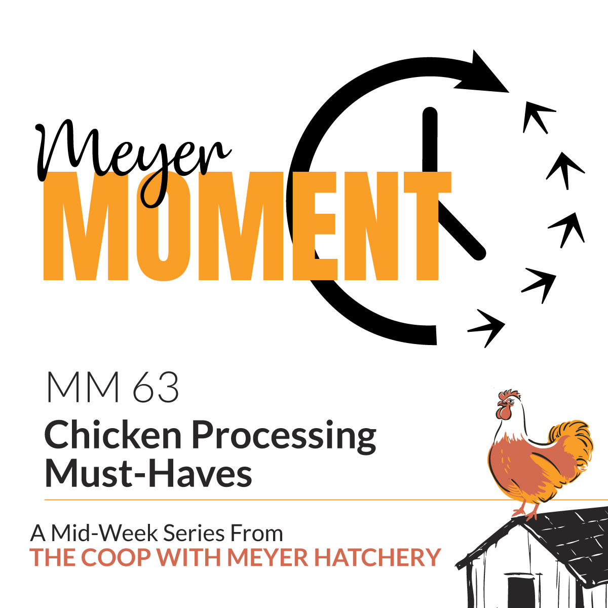 Meyer Moment 63 - Chicken Processing Must-Haves | The Coop Podcast